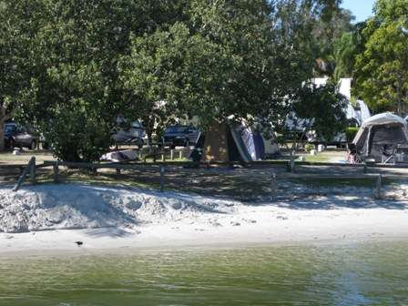 Tent tucked under the trees by the Noosa River
